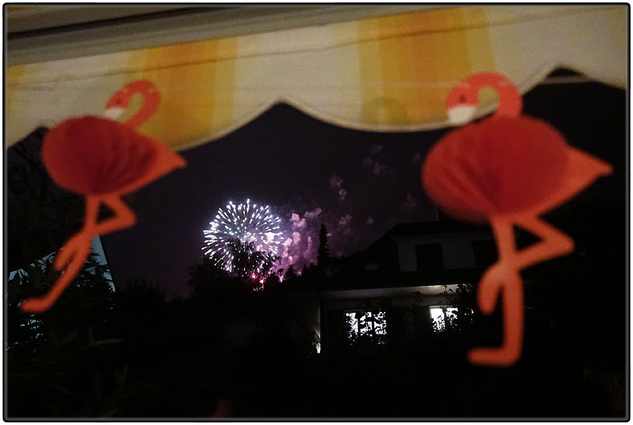 Fireworks and flamingoes